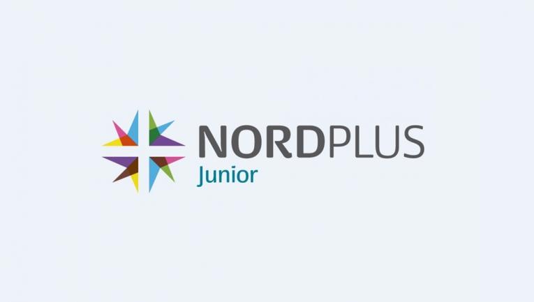 Nordplus Junior 2018 projekts - MŪŽIZGLĪTĪBA - Projekti - Rdmv.lv